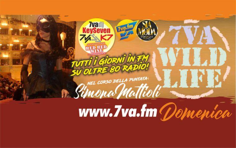 DJ KeySeven WildLife DOM